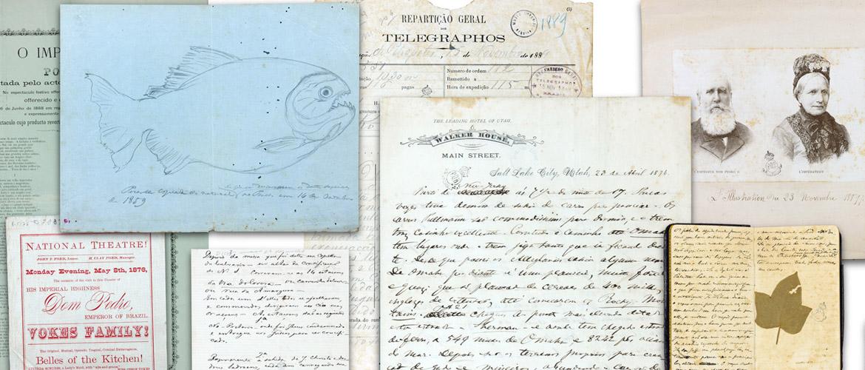 Documentação Museológica e Sistemas Informatizados